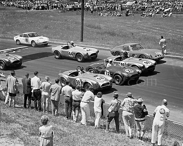 Start of GT race at Watkins Glen during USRRC weekend in June, 1964; winner Ken Miles in Cobra 98, starting from pole, and team mate Ed Leslie in 99 are split by second-row starters Bob Johnson (Cobra 33) and Xxx (Ferrari 23).