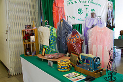 01 August 2014:   McLean County Fair, 4-H sewing display