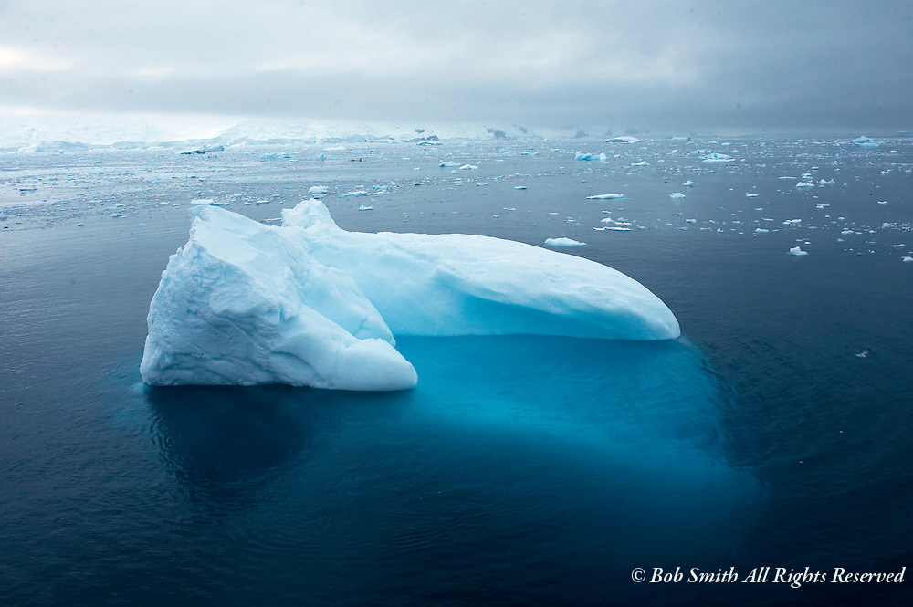 An iceberg consists of 1/8 above the water and 7/8 below the surface.