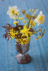 Spring arrangement with Narcissus 'Rip van Winkle'. N. 'Trepolo' Epimedium versicolor and Spiraea