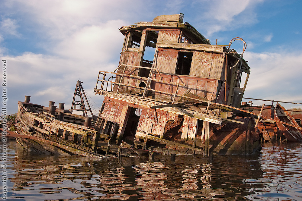 Steam Tug Ned Moran, 2004
