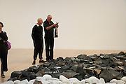 TREVOR FOSTER; PAUL ASHURST, Richard Long: Heaven and Earth. Tate Britain, Millbank. London. 1 June 2009