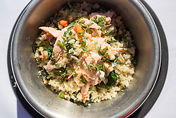 Hamish, the Commonwealth Scottie Dog, tries out the Chez Roux dog menu at Greywalls Hotel & Chez Roux, Gullane. Pic of the salmon, mackerel, spinach and brown rice risotto.