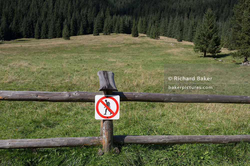 A landscape of spruce trees and the meadows of a farm where hikers are discouraged from crossing over wooden agricultural fencing in Dolina Chocholowska, a hiking route in the Polish Tatra mountains, on 17th September 2019, near Zakopane, Malopolska, Poland.