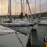 Før regattaen