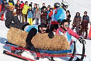 Sandro Cavegn, Jontsch Schächter, Corinne Schädler und Monika Fasnacht beim Hornschlittenrennen. Renzo's Schneeplausch vom 23. Januar 2016 in Vella, Gemeinde Lumnezia.