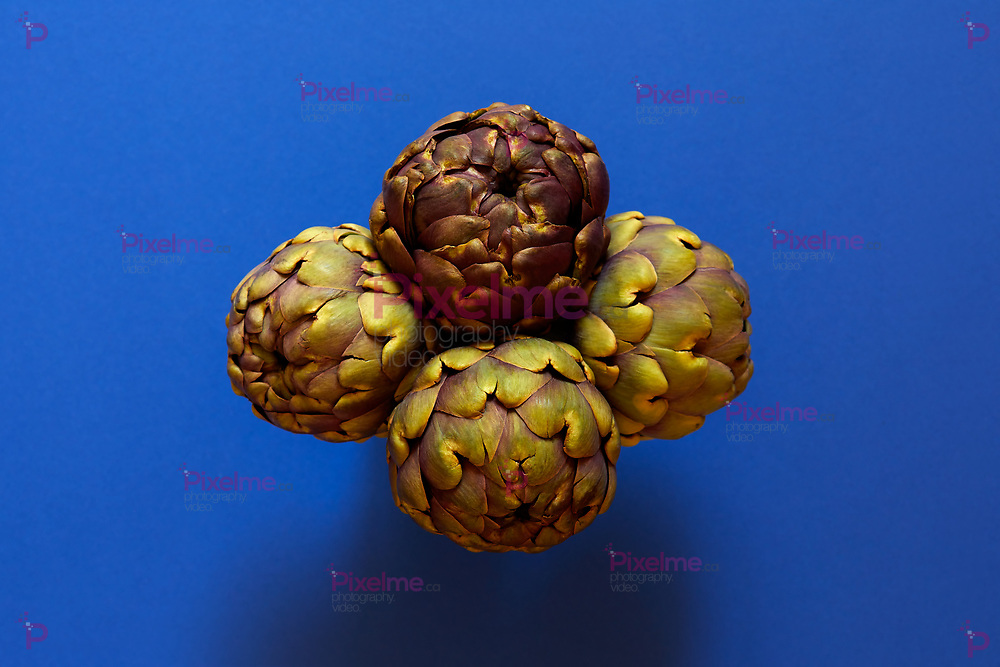 Group of 4 artichokes isolated from above over a blue background flatlay concept
