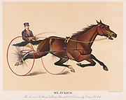 St. Julien The famous Trotting Gelding 1889 Driven by Orin Heckok