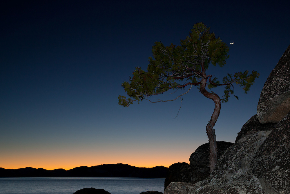 """""""Tree and Tahoe Sunset 1"""" - This tree, sunset, and sliver of a moon were photographed near Secret Cove beach, Lake Tahoe."""