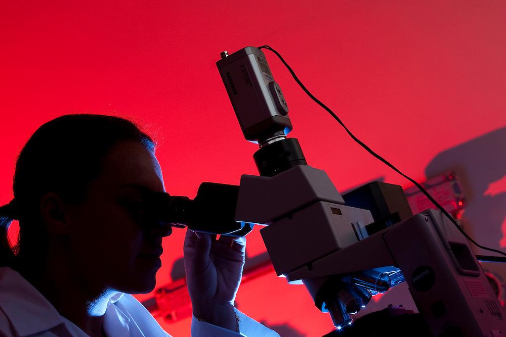 Belo Horizonte_MG, Brasil...Laboratorio de Quimica da UFMG. Na foto pesquisadora usando microscopio...Chemistry Laboratory of UFMG. In this photo a research using a microscopy...FOTO: LEO DRUMOND /  NITRO.