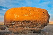 Sandstone  concretion<br /> Red Rock Coulee Natural Preserve<br /> Alberta<br /> Canada