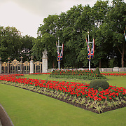 The Mall Garden - Westminster, UK