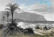 Machine colourised (AI) caravan of camels at the Bay of Acre [Haifa] with Mount Carmel in the background Engraving of Steel of from 'Picturesque Palestine, Sinai and Egypt' by Wilson, Charles William, Sir, 1836-1905; Lane-Poole, Stanley, 1854-1931 Volume 3. Published in by J. S. Virtue and Co 1883