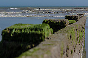 June 3, 2015 - Hastings, England, UK - A man surfing into the sea waves appears behind the coast wooden piles of Hastings. Pillars are clad from coast green algae, a sea which is characterised of its fascinating activity of tides and tide. (Credit Image: © Vedat Xhymshiti/ZUMA Wire)