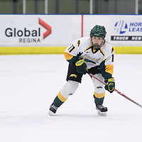 1st year forward Martina Maskova (11) of the Regina Cougars in action during the Women's Hockey home game on February 9 at Co-operators arena. Credit: Arthur Ward/Arthur Images
