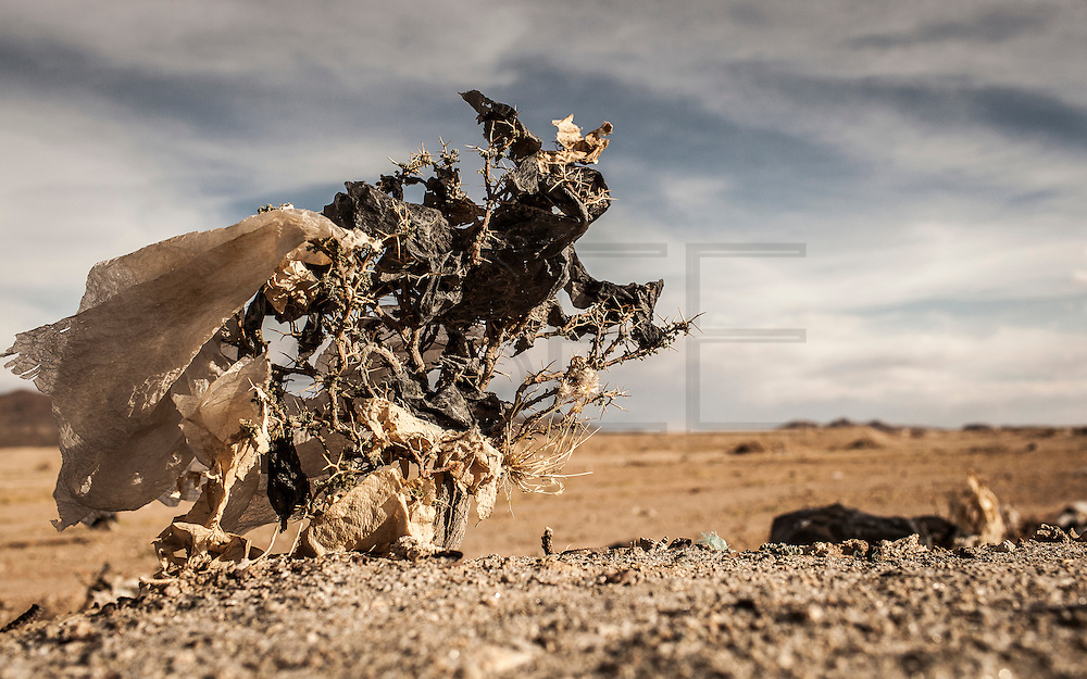 08/11/2014 - Uyuni, Bolivia:Plastic tree #27. Plastic bags are part of the landscape of the Bolivian Altiplano. The accumulation of plastic bags on the environment cause deterioration of the landscapes and agriculture soils and it is associated to the death of domestic and wild animals.