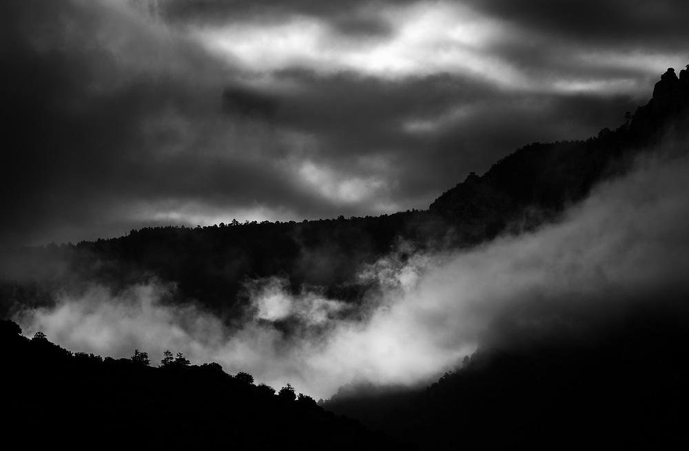 Sedona Dawn