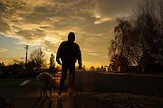 USA, Oregon, Keizer, man taking Labrador Retriever for walk at sunrise. MR, PR
