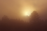 Foggy morning sunrise - Quebec, Canada.