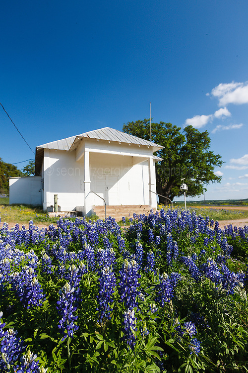Bluebonnets and wildflowers old Prairie Mountain School in the Texas Hill Country, USA