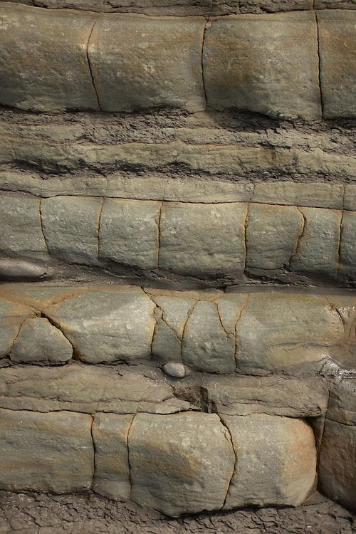 Eroded Sandstone, Kalaloch Beach 4, Olympic National Park, Washington, US