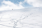 A skier climbs a ridge to Fourth of July Bowl from the summit of Independence Pass outside of Aspen, Colorado. The pass closed to motor vehicles at 7 p.m. that evening.