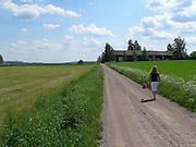 På en sommarväg i Dalarna