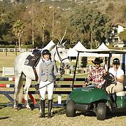 Golf Cart Polo Ride & Drive 1.00m