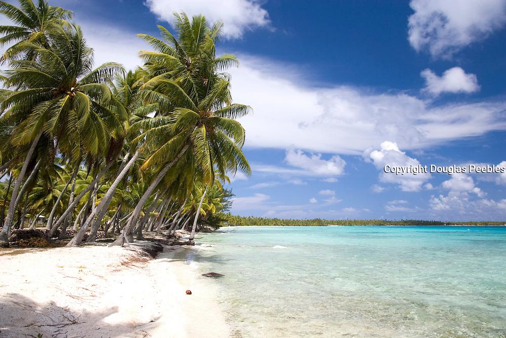Beach, Takapoto, Tuamotu Islands, French Polynesia<br />
