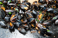 Freshly harvested mussels cooked outdoors by fisherman Janne Bark in a large pan with herbs, garlic, onions, parsley, chili, and white wine.