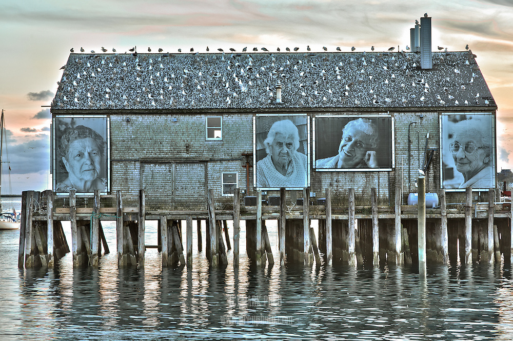 Large photographs are displayed on the side of Fisherman's Wharf in Provincetown Harbor.