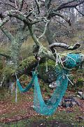 Hanging nets at Carsaig Bay fishing pier, Isle of Mull, Scotland.