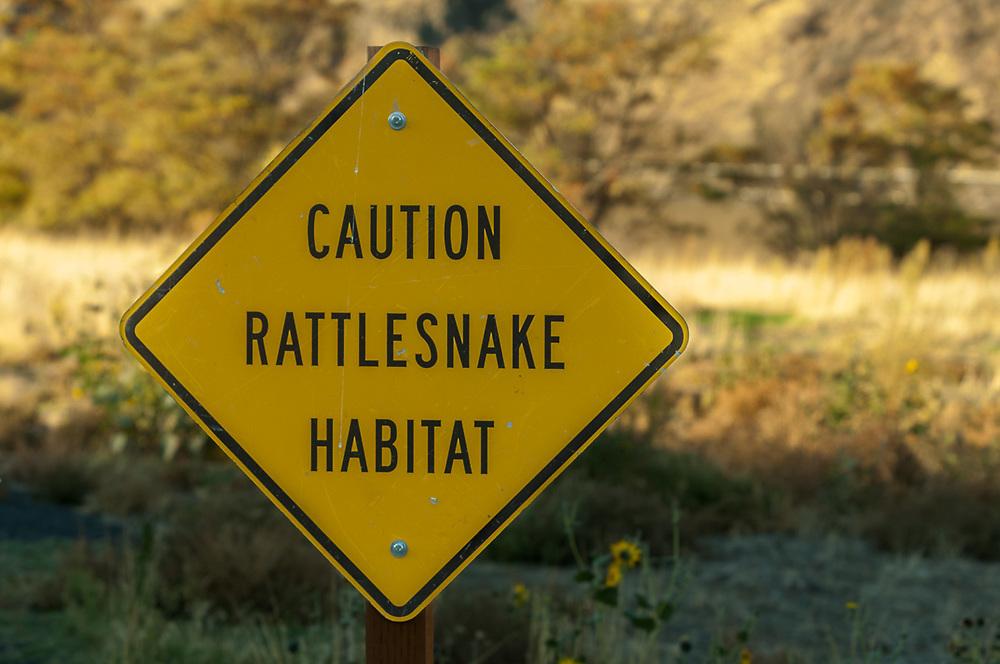 Rattlesnake warning sign, morning light, October, Boyer County Park, Snake River Canyon, Whitman County, Washington, USA