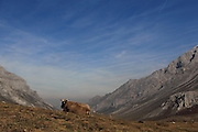Hiking near Fuente Dé, Picos de Europa, in northern Spain