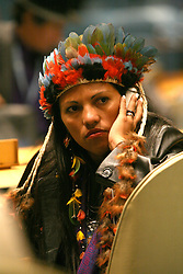 Delegate at the United Nations Permanent Forum on Indigenous Issues, 2010.