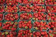 Outdoor Market, Strawberries, Calvisson, Southern France