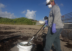 October 4, 2018 - Boynton Beach, FL, USA - Workers from the Palm Beach County Parks and Recreation Department pick up dead fish from the Ocean Inlet Park in Ocean Ridge, Fla., Thursday, Oct. 4, 2018. Officials have confirmed that red tide has appeared on Florida's Atlantic Coast. (Credit Image: © Joe Cavaretta/Sun Sentinel/TNS via ZUMA Wire)
