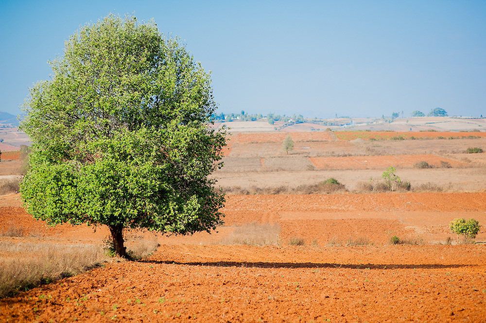 Myanmar countryside