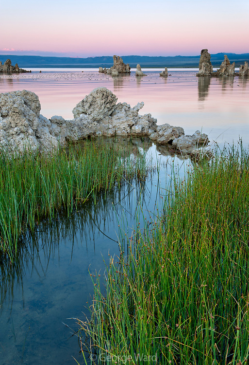 Spring entering Mono Lake after Sunset, Mono Basin National Forest Scenic Area, California