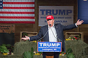 Billionaire and GOP presidential candidate Donald Trump addresses supporters at a rally January 27, 2016 in Lexington, South Carolina.