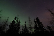 Sometimes the Aurora is more subtle, but if you pay attention to the varying hues, you're still blown away.