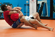 After a brief training session at Velociti Fitness League in Pantego MMA fighter Johny Hendricks (bottom) and NASCAR driver Kevin Harvick had a friendly fight in the octagon on Wednesday, April 10, 2013. (Cooper Neill/The Dallas Morning News)