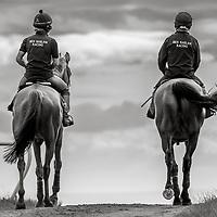 middleham gallops North Yorkshire