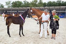 035 - Huwerna<br /> KWPN Paardendagen - Ermelo 2012<br /> © Dirk Caremans