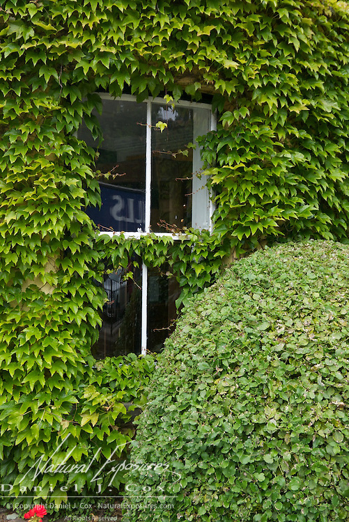 Ivy covered walls greet visitors at the Dunraven Arms Hotel in Adare, Ireland