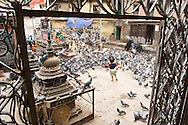 The beautiful squares of Kathmandu are swarming with activity.  In this one, the locals seem to like to feed (and chase) the pigeons.