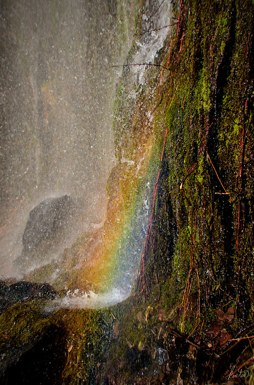 A rainbow appears in a waterfall next to a very mossy bank.