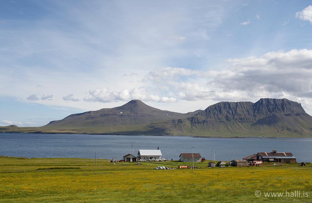 Farm in Reykjarfjordur, Strandir Iceland - Bændabýli í Reykjarfirði á Ströndum, Kjörvogur?