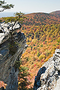 Look across miles of autumn orange and red foliage at Hanging Rock State Park, Stokes County, North Carolina, USA. The eroded quartzite knob called Hanging Rock rises to 2150 feet elevation. The park is 30 miles (48 km) north of Winston-Salem, and approximately 2 miles (3.2 km) from Danbury. Hanging Rock State Park is located in the Sauratown Mountain Range, which is made up of monadnocks (or inselbergs, isolated hills) that are separated from the nearby Blue Ridge Mountains. Prominent peaks in the Sauratown range rise from 1,700 feet (520 m) to more than 2,500 feet (760 m) in elevation and stand in contrast to the surrounding countryside, which averages only 800 feet (240 m) in elevation. Named for the Saura Native Americans who were early inhabitants of the region, the Sauratown Mountains are the erosion-resistant quartzite remnants of mountains pushed up between 250 and 500 million years ago.