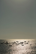 View of boats on sea at sunrise, Cadiz, Andalusia, Spain